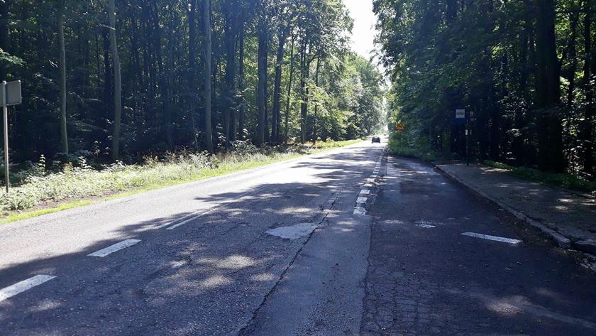 droga w lesie pomiędzy Policami i Przęsocinem